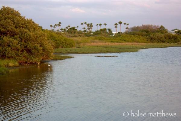 FL waters
