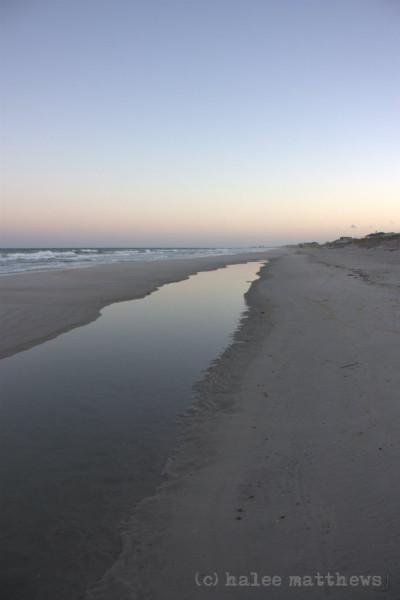 F8 Island beach tidepool